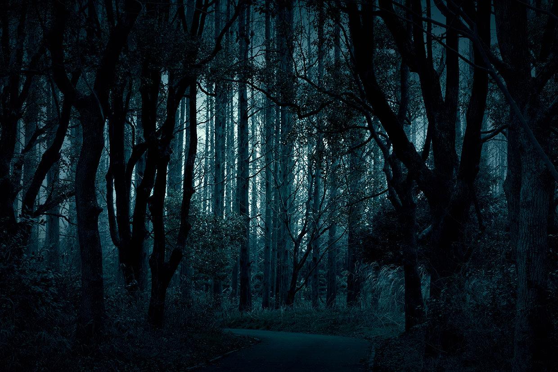 ホラー映画は森から生まれる